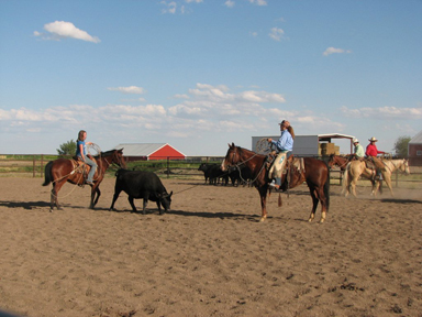 Ranch Rodeo Clinic for 4H Members
